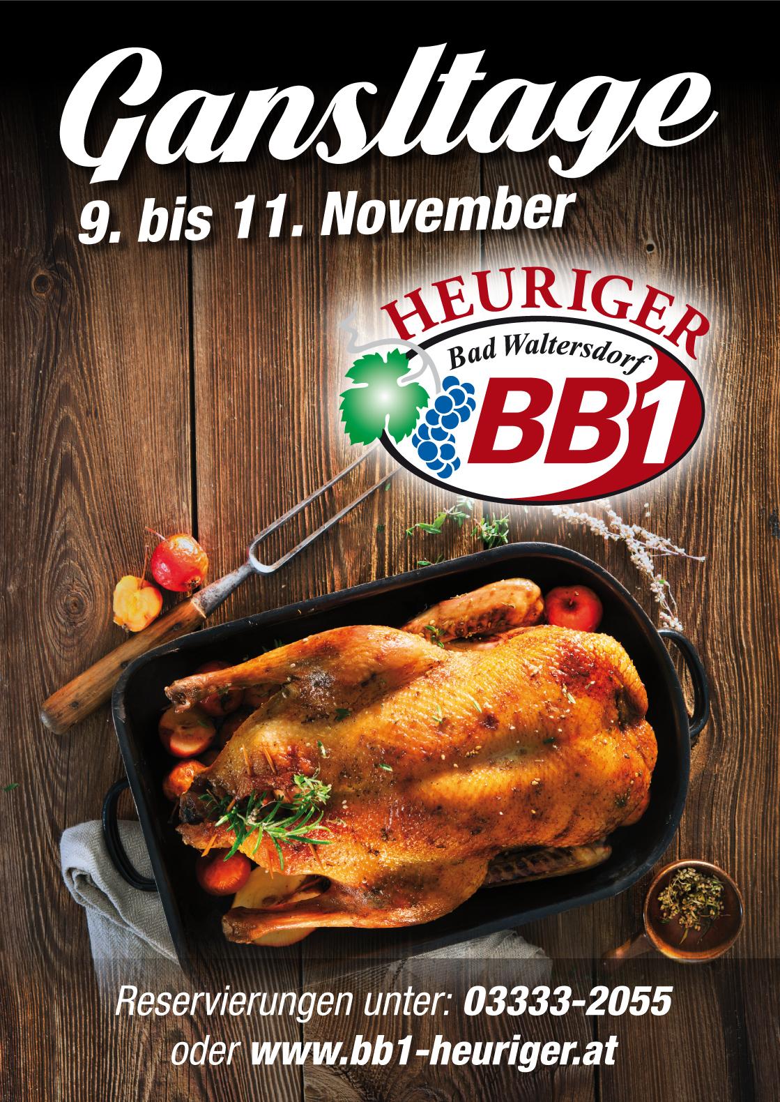 BB1 PLAKAT A4-A2 Ganseltage